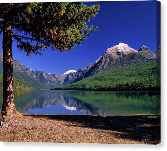 Glacier National Park Canvas Print - Bowman Lake by Leland D Howard