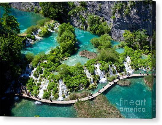 Bush Canvas Print - Breathtaking View In The Plitvice Lakes by Royalty Stock Photos Hq