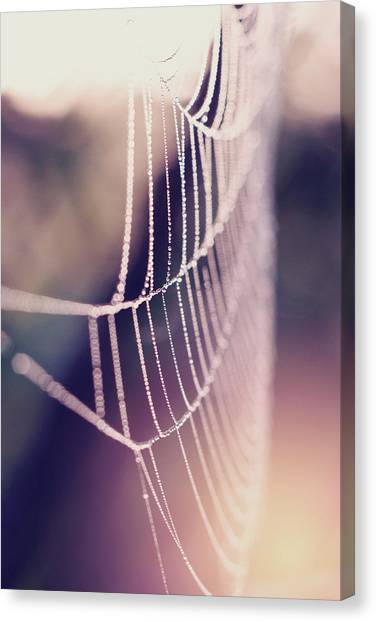 Bright And Shiney Canvas Print