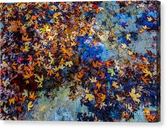 Beauty Canvas Print - Bright Beautiful Fall Foliage Floating by Richard A Mcmillin