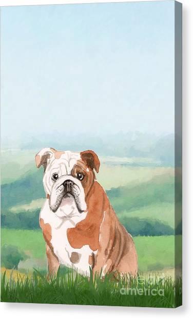 Purebred Canvas Print - British Bulldog by John Edwards