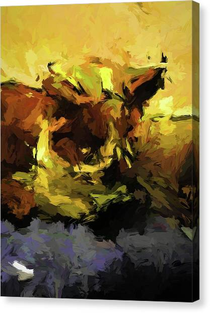 Brown Cat On The Cushion Canvas Print