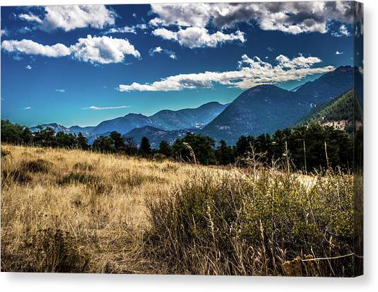 Canvas Print featuring the photograph Brown Grass And Mountains by James L Bartlett