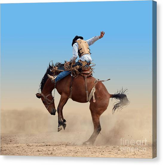 Cowboy Canvas Print - Bucking Rodeo Horse Isolated With by Margo Harrison
