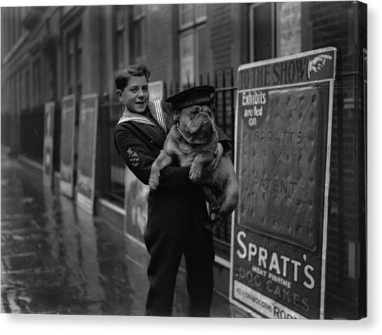 Placard Canvas Print - Bulldog Beauty by London Express