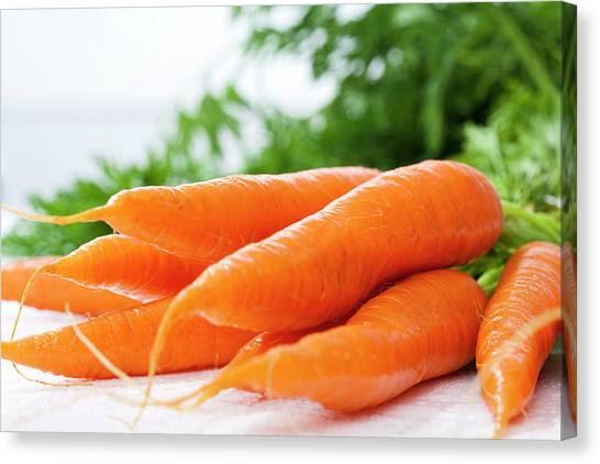 Bunch Of Fresh Carrots, Close Up Canvas Print by Westend61