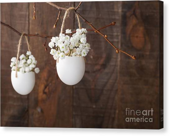 Nature Still Life Canvas Print - Bunch Of Of White Babys Breath Flowers by Nella