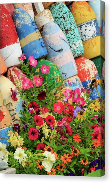 Buoys And Petunia Flowers, Rockport Canvas Print by Adam Jones
