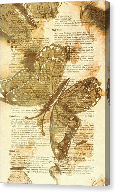 Moth Canvas Print - Butterfly Antiquities by Jorgo Photography - Wall Art Gallery