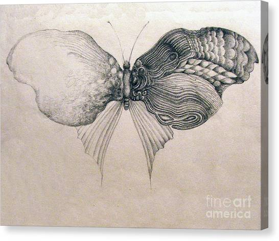 Butterfly For Jeffrey Canvas Print