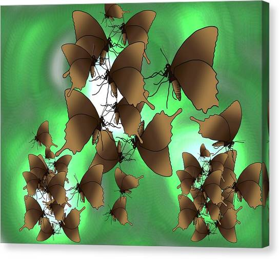 Canvas Print - Butterfly Patterns 15 by Joan Stratton
