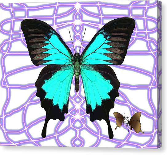 Canvas Print - Butterfly Patterns 18 by Joan Stratton