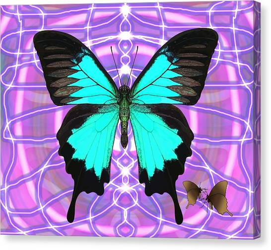 Canvas Print - Butterfly Patterns 19 by Joan Stratton