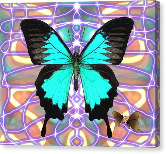 Canvas Print - Butterfly Patterns 20 by Joan Stratton