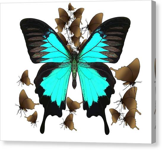 Canvas Print - Butterfly Patterns 25 by Joan Stratton