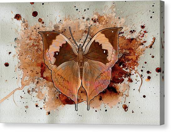 Butterfly Splash Canvas Print