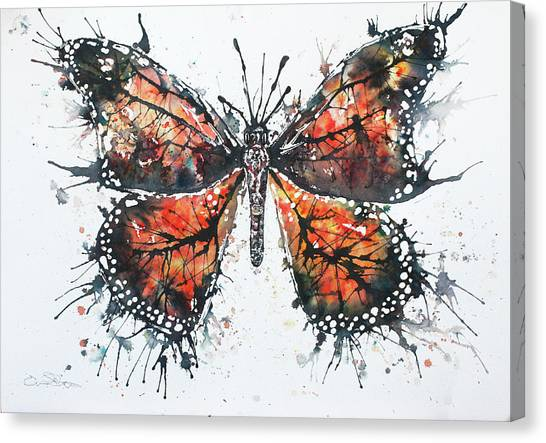 Canvas Print - Butterfly Study I by John Silver