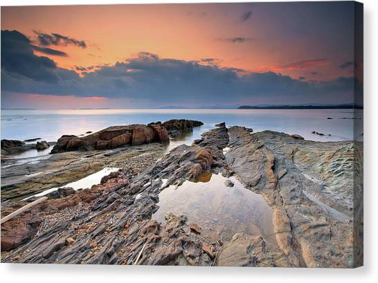 Mimosa Canvas Print - Cabasson Beach At Sunset by Eric Rousset