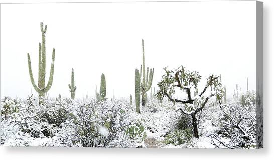 Canvas Print featuring the photograph Cactus In The Snow by Jean Clark
