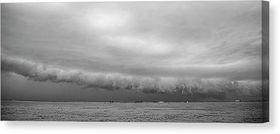Cactus Roll Cloud Bw Canvas Print