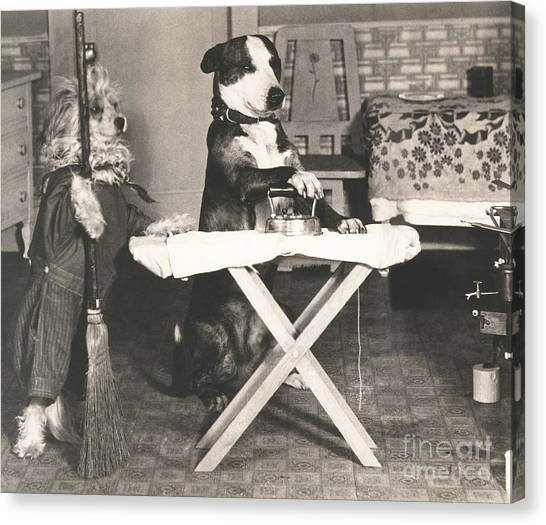 Indoors Canvas Print - Canine Chores by Everett Collection