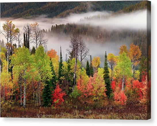 Caribou Canyon Canvas Print by Leland D Howard