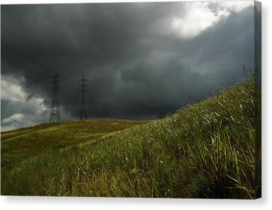Caroni Grasslands Canvas Print