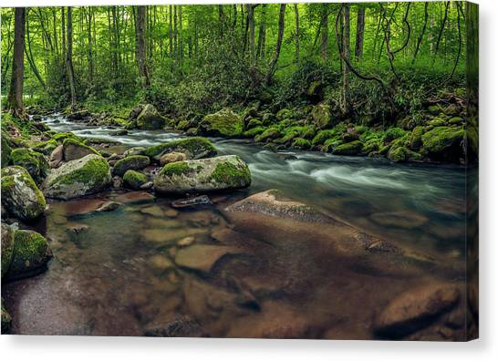 Cascades Of The Oconaluftee Canvas Print