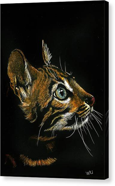 Cat Looking Up Canvas Print