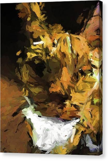 Cat Up Close Canvas Print