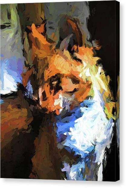 Cat With The Turned Head Canvas Print