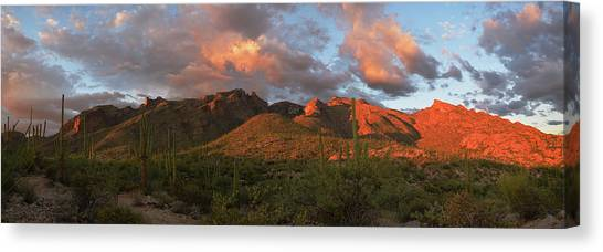 Catalina Mountains, Arizona Canvas Print