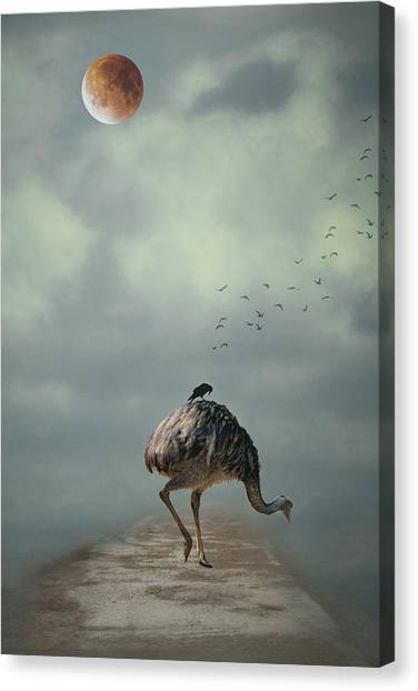 Emus Canvas Print - Catching A Ride by Rebecca Cozart