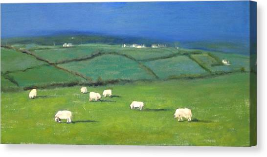 Celtic Sheep Canvas Print