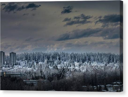Canvas Print featuring the photograph Central Park Winter by Juan Contreras