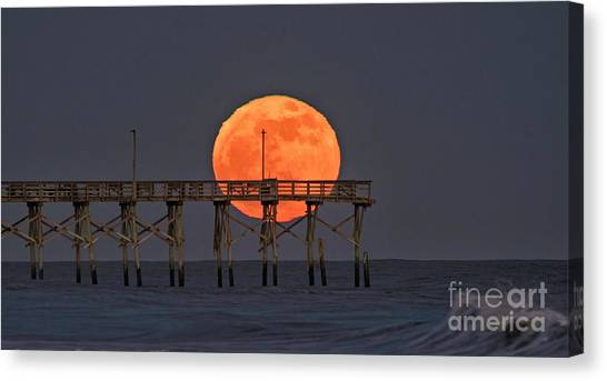 Cheddar Moon Canvas Print