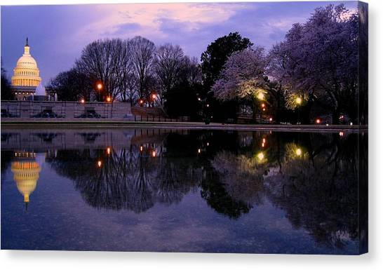 Cherry Blossom At Capitol Hill Canvas Print by Patrick Yuen