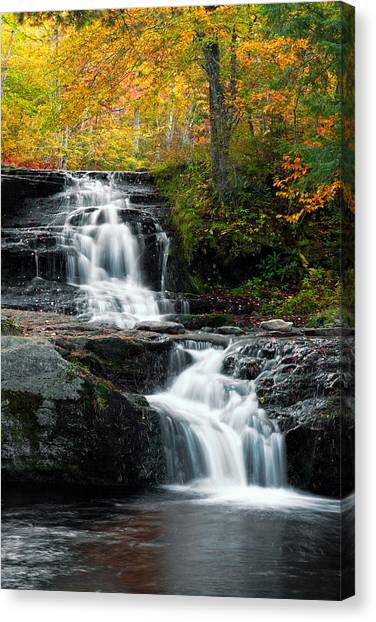 Choke Creek Falls Canvas Print by Michael Gadomski