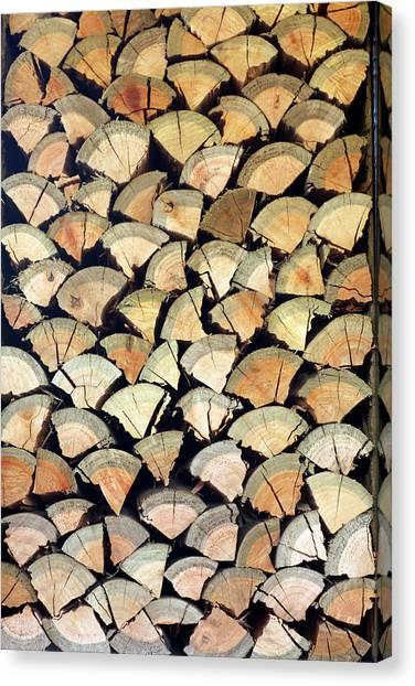 Chopped Logs, Hoedspruit, Mpumalanga Canvas Print