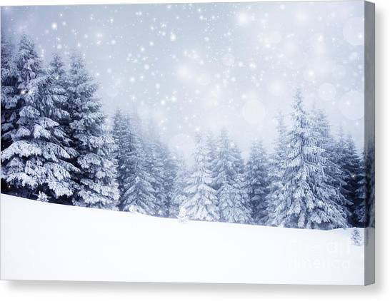 Hoarfrost Canvas Print - Christmas Background With Snowy Fir by Melinda Nagy