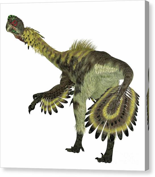 Velociraptor Canvas Print - Citipati Dinosaur Tail by Corey Ford
