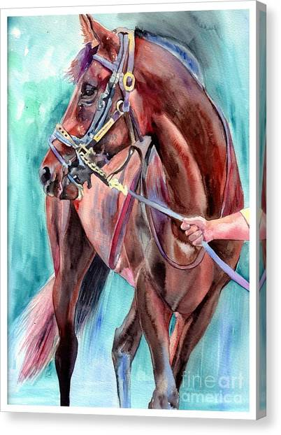 Anatomy Canvas Print - Classical Horse Portrait by Suzann Sines
