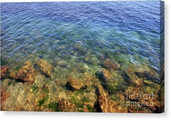 Clear Water At Morro Bay Canvas Print