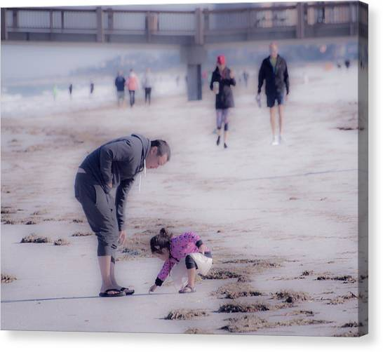 Clearwater Beachcombing Canvas Print
