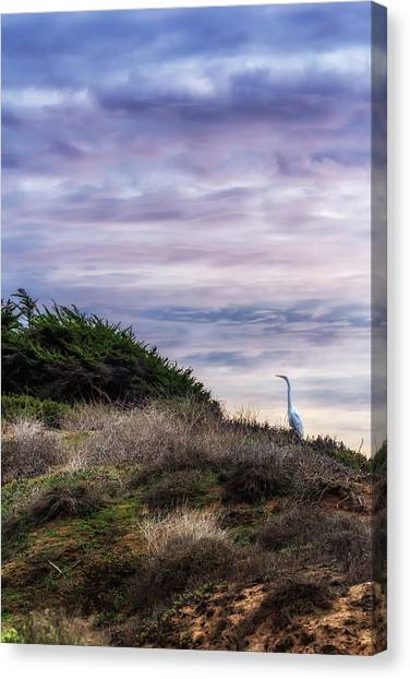 Cliffside Watcher Canvas Print