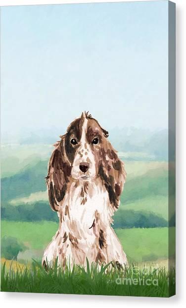 Purebred Canvas Print - Cocker Spaniel by John Edwards