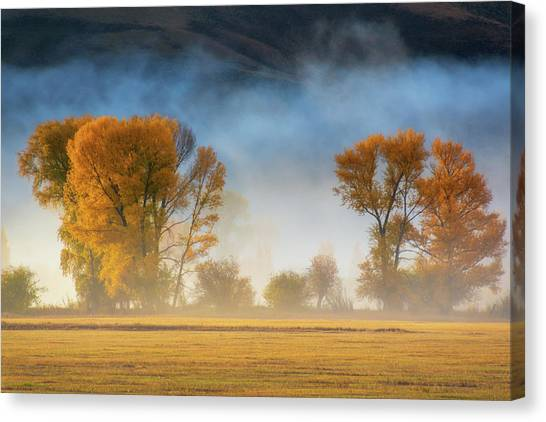 Colorado Autumn Fog Canvas Print