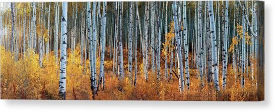 Colorado Autumn Wonder Panorama Canvas Print
