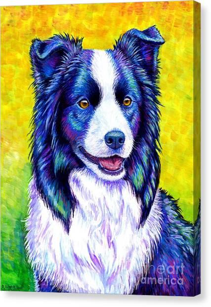 Colorful Border Collie Dog Canvas Print