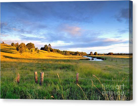 Stunning Canvas Print - Colorful Landscape Of Grass Field And by Maythee Voran